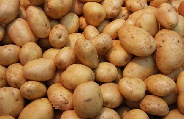 potato en