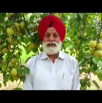 mohinder-singh-grewal-en