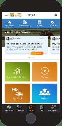 Carrot Farming Information | Carrot Farming