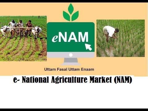 Government Scheme: National Agricultural Market Scheme (e-NAM) | Govt. Agricultural Schemes